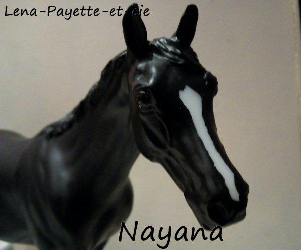 Présentation des chevaux: Nayana