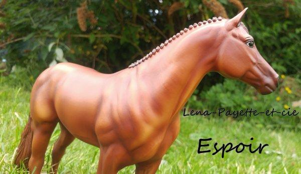 Présentation des chevaux: Espoir