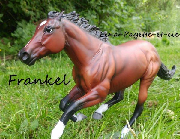 Présentation des chevaux: Frankel
