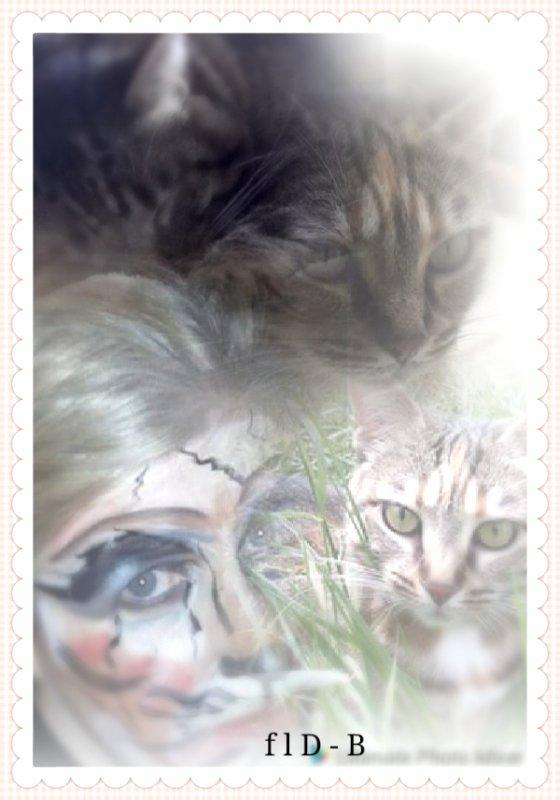 Mes Chats et moi , Maquillage Artistique
