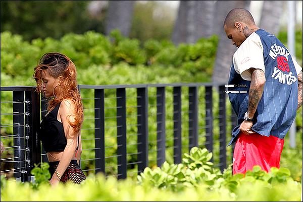 . 20 FEV. : Chris et Rihanna ont été aperçus main dans la main en train de se promener sur une plage d'Hawaï. TOP/FLOP ? -