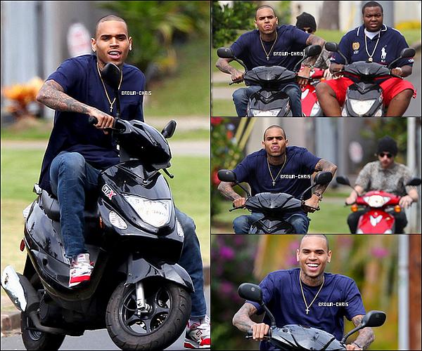 . 21 FEV. : Chris a été vu en train de faire du scooter dans les rues d'Hawaï avec ses proches dont Sean Kingston. TOP/FLOP ? -