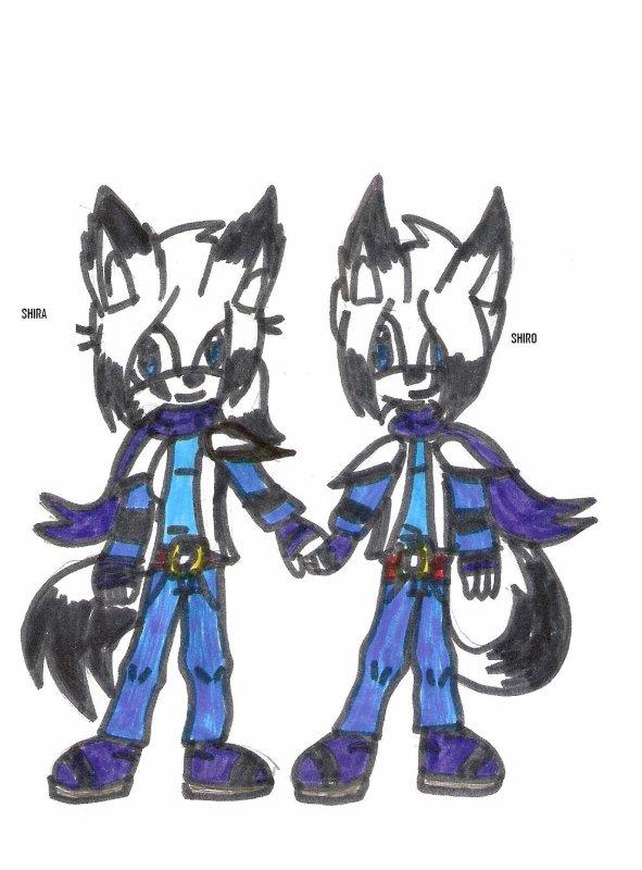 Shira et Shiro, les fennecs jumeaux
