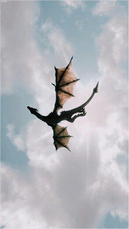 L'Héritier Dragon - Chapitre 5