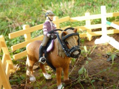 Le beau poney renacle ?