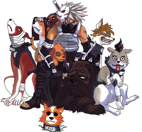 kakashi ninja dogs