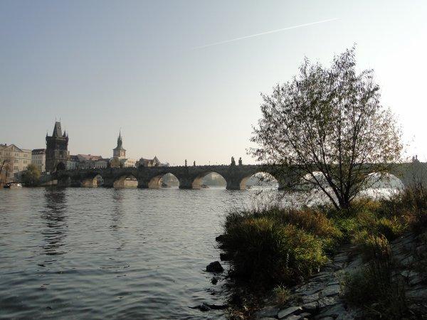 Prague 2011 (suite)