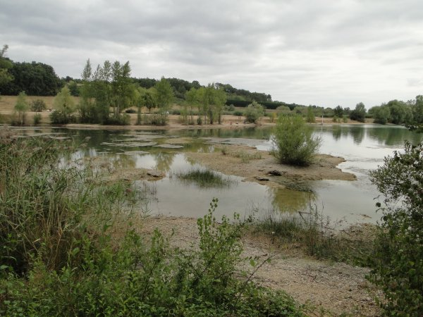 Découverte de Poitiers et ses environs 2012 (suite 2)