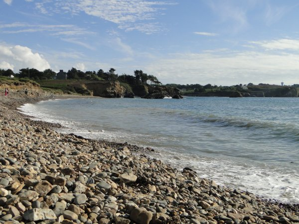 Bretagne 2013 : Océanopolis 2