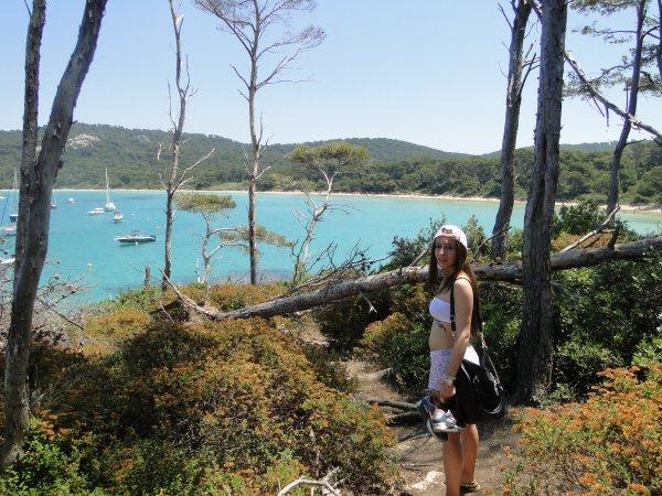 Sud de France 2014 : l'île de Porquerolle