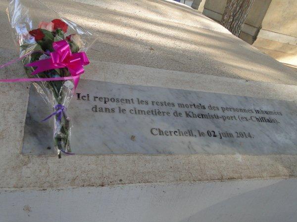 Algérie 2014 : La cérémonie et le jardin d'essai