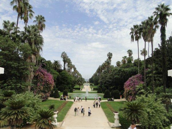 Algérie 2014 : Le jardin d'essai à Alger