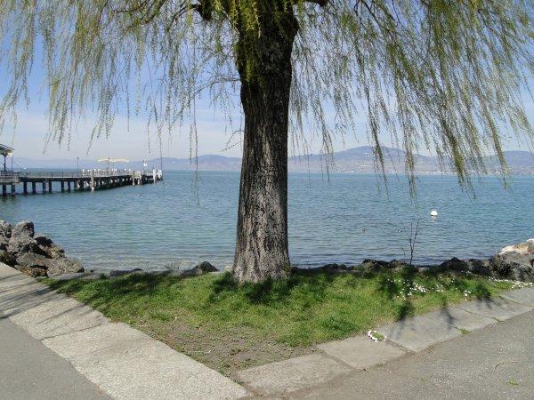 Suisse 2015 : Port Valais et le lac de Léman