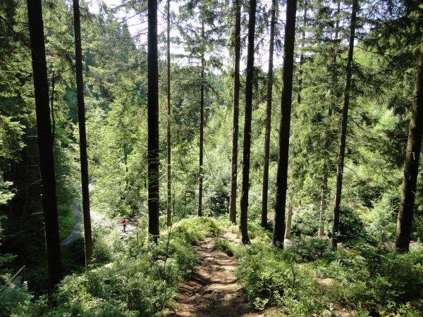 Belgique 2015 : Ardennes