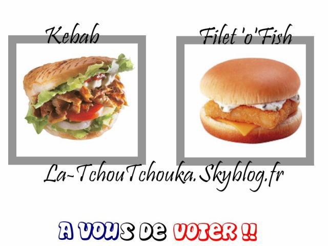 Le vote est un droit civique. Voila les éléctions Kebab/Filet 2010 approchent, je te propose soit de voter pour un (bon) kebab soit, un Filet'o'Fish (un peu bon) ! Je vous laisse faire votre choix, que le meilleur gagne ! Bon ap ! Pour moi : Un kebab galette sauce blanche, avec Frites, sans salade avec un Fanta citron. MERCI!  Ben quoi !!?