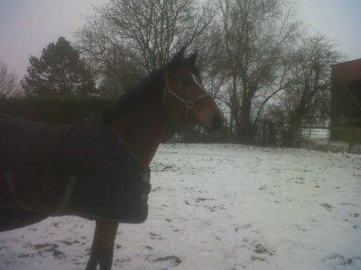 Lina dans la neige ;)