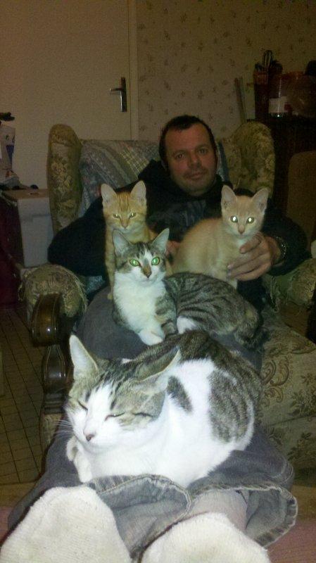 mon homme et les chats