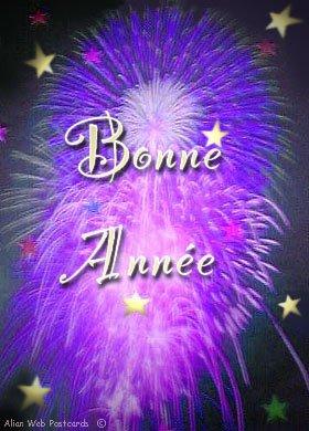 BONNE ANNEE 2011!!!