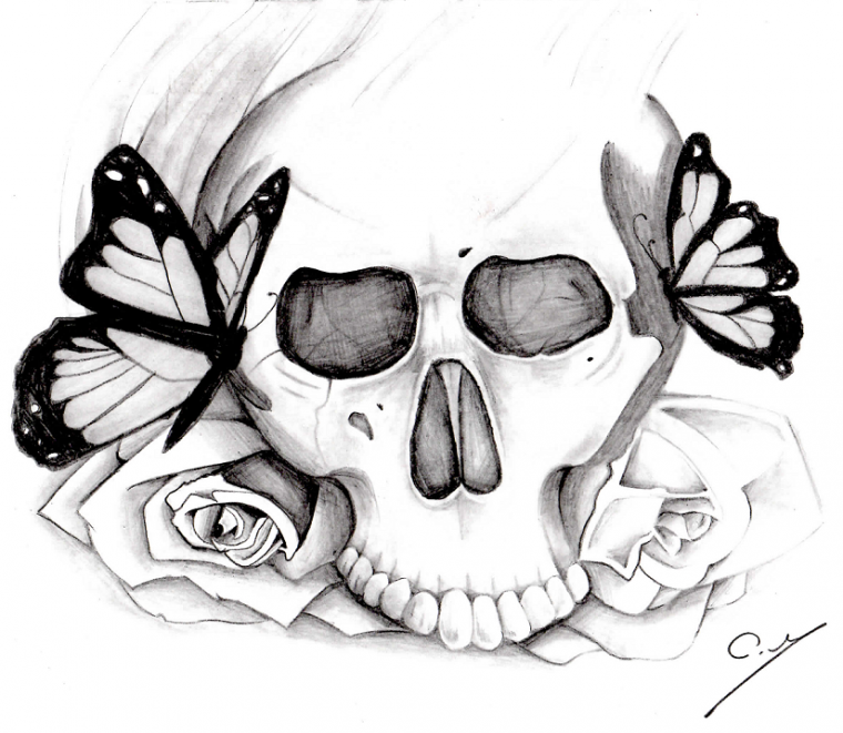 Articles de simply drawing tagg s dessin t tes de mort - Dessin tete de profil ...