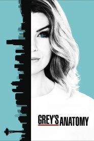 Grey's Anatomy Season 13 Episode 10 Online S13E10 - [13/10] Full HD