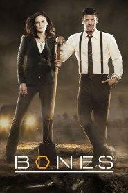 Online Bones s12e12 | Bones 12x12 Full Episode