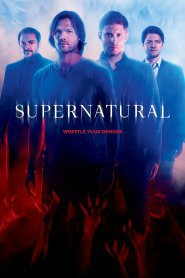 TORRENT Nitroflare Supernatural s12e19 | Supernatural 12×19 Download
