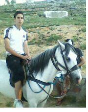 moi est mon chevale