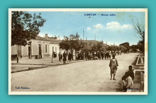 LAMTAR : Série de Cartes Postales de Freddy BOUTON