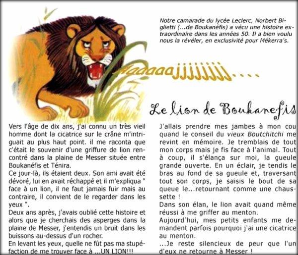 BOUKANEFIS : Document créé par JC ROSSO