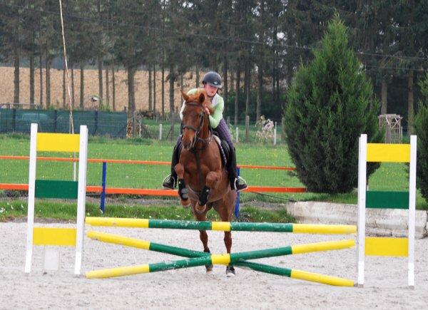 Cours d'obstacle ; Ninie et Sèvres ; Nouvelle piste en sable blanc :) Préparation au concours fin avril