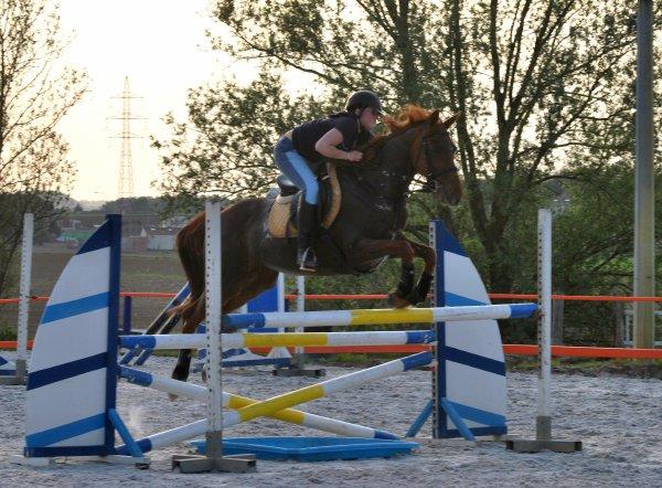 19 avril : entraînement obstacle pour le concours de ce weekend. Ninie et Sèvres.. du80- 90 au m 20