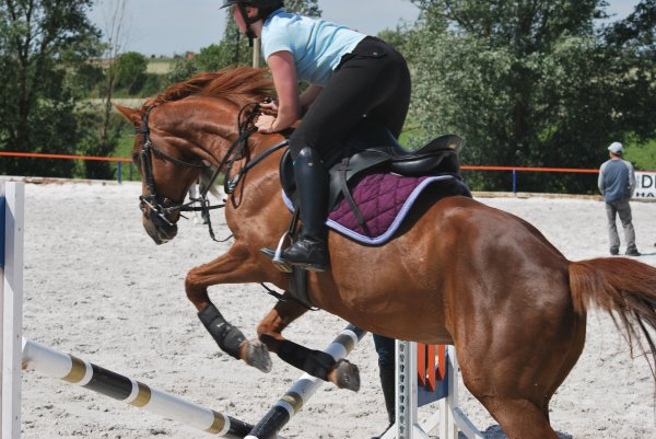 28 mai 2011 > entraînement obstacle