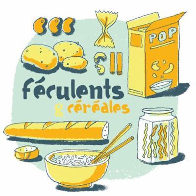 Les differents types d 39 aliments la sante passe aussi par l 39 alimentation - Les aliments riches en glucides ...