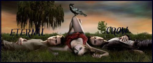 The eternal crow // Fiction basée sur la série