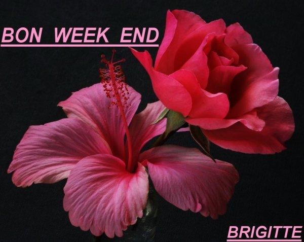 Bon week end a toutes et tous mes chers amis es le gros delire d une mamie - Bon week end a tous ...