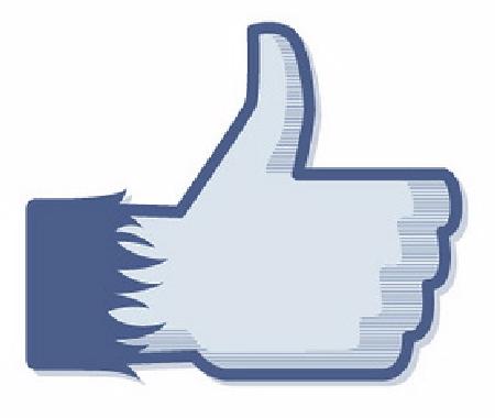 """Facebook : La traque aux faux """"j'aime"""""""