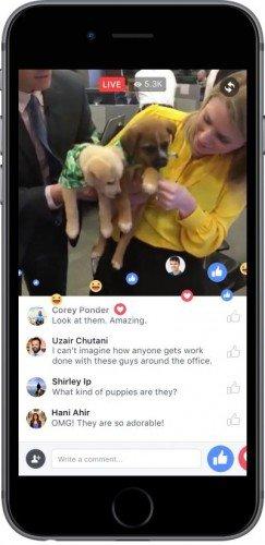 Les vidéos en direct sur Facebook bientôt programmables à l'avance par tous