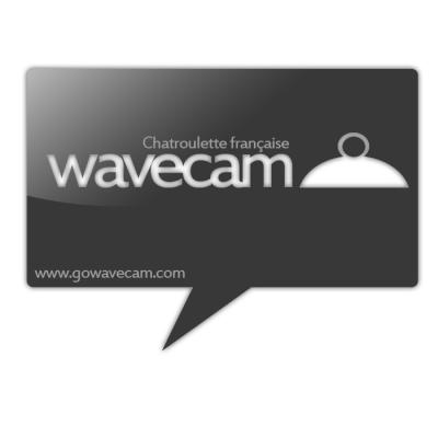 Découvrez WAVECAM ! [ www.gowavecam.com ]