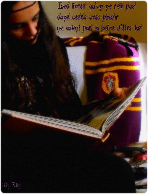 PAL : Pile à lire