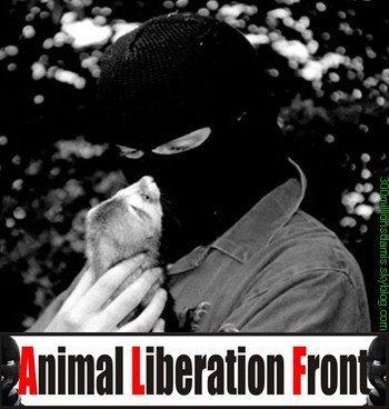 VOICI LE LIEN DE MON BLOG DESTINE A LA PROTECTION DES ANIMAUX  DDA defense des animaux.:http://www.facebook.com/?sk=messages&tid=1558610248583#!/pages/DDA-Defense-des-animaux/177311815627871