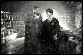 Harry et Horace, Harry Potter et le prince de Sang-Mélé.