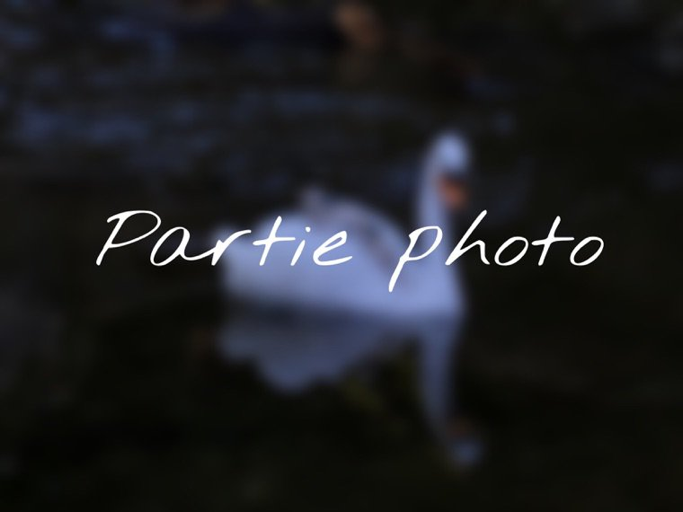 ~La photographie, un des septième art~