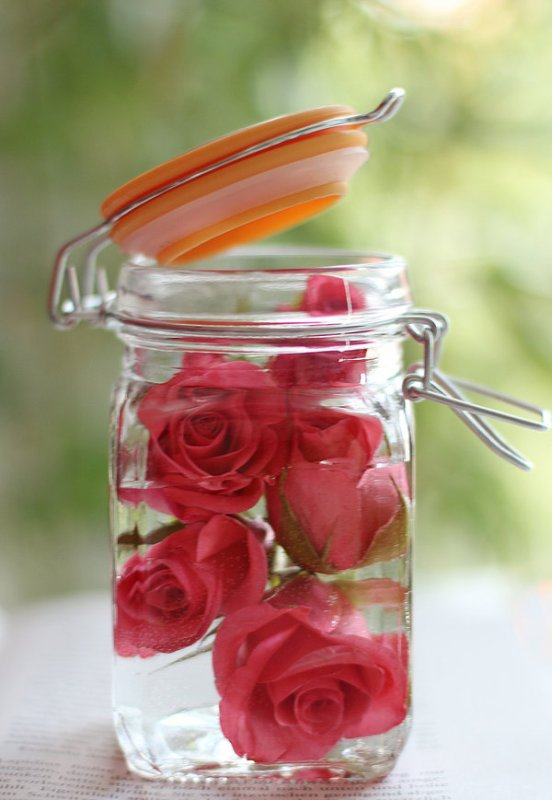 L'amour commence dans de l'eau de rose <3