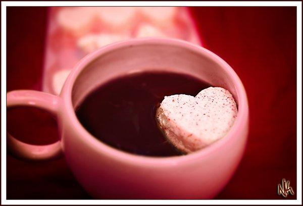 Bonne Saint Valentin à vous tous, entre amoureux, amis, famille ou seul !