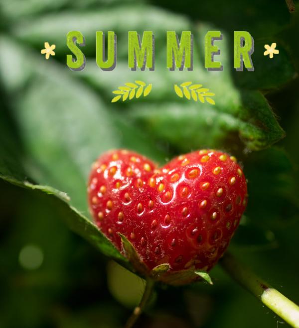 """""""L'été arrive, et la vie devient facile."""""""