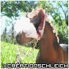 XCreationSchleich