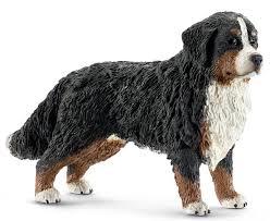 un chien au C.E