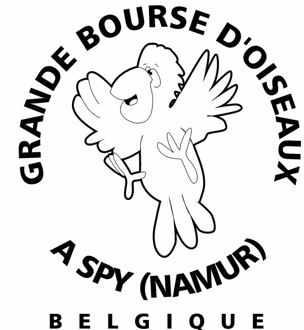 BOURSE DE SPY 28 OCTOBRE 2012