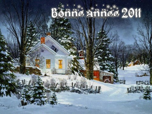 "(l)(l)(l)(l)(l)     ""  BONNE ET HEUREUSE ANNÈE 2011   (l)(l)(l)(l)(l)"