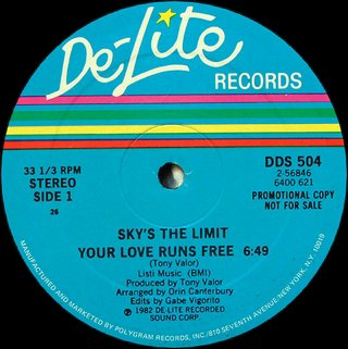 Sky's The Limit - Your Love runs Free